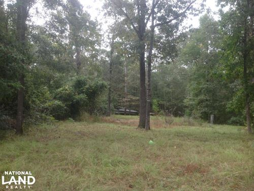 Lake Marion Homesite : Manning : Clarendon County : South Carolina
