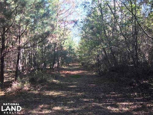 Sand Springs Road Homesite OR Weeke : Fayette : Alabama