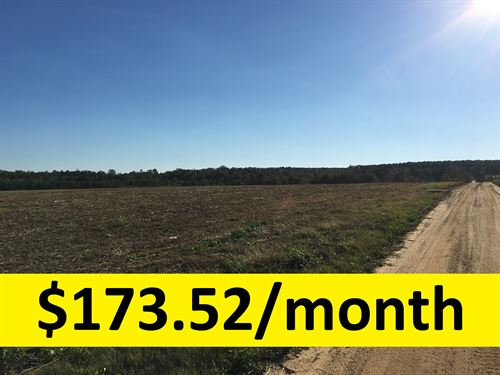 Beautiful Pasture Owner Financed : Uvalda : Montgomery County : Georgia