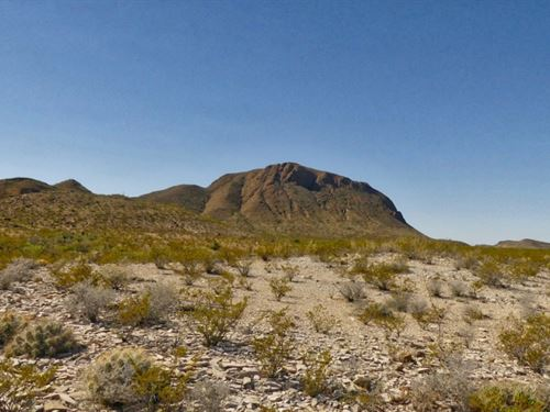 20 Acres In The Foot Hills Of Jack : Terlingua : Brewster County : Texas