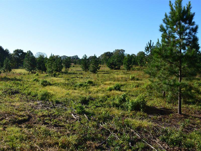 9 Commercial / Development Acres : Inman : Spartanburg County : South Carolina