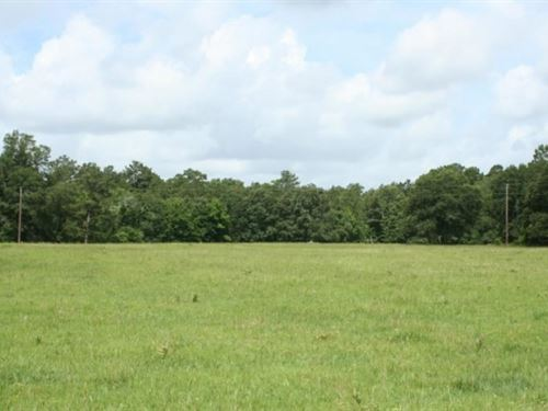 Hidden Meadows : Montgomery : Texas