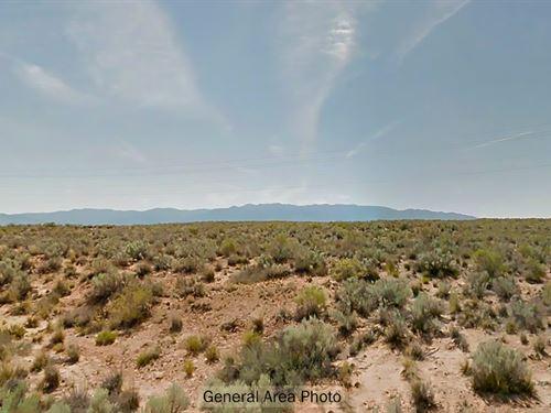 Open, Rural New Mexico Land : Belen : Valencia County : New Mexico