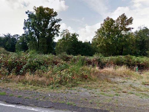 Peaceful Wetlands Acreage : Lacey : Thurston County : Washington
