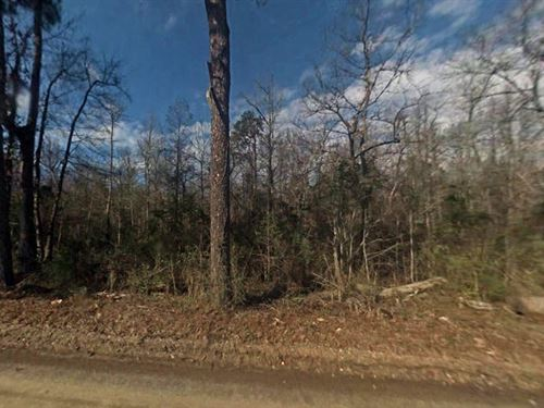 1.39 Acres In Coward, SC : Coward : Florence County : South Carolina