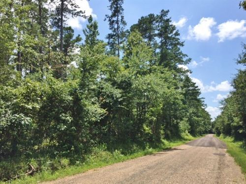 Small Acreage For Sale In The Count : Ruth : Pike County : Mississippi
