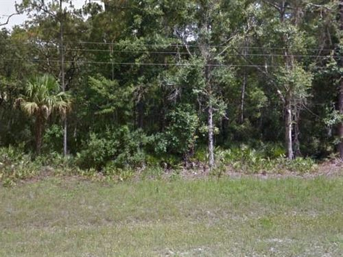 Levy County, Fl $35,000 Neg : Chiefland : Levy County : Florida