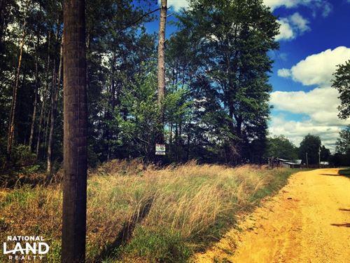 Tibbie Home Site : Tibbie : Washington County : Alabama