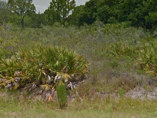 Highlands County, Fl $15,000 Neg : Lake Placid : Highlands County : Florida