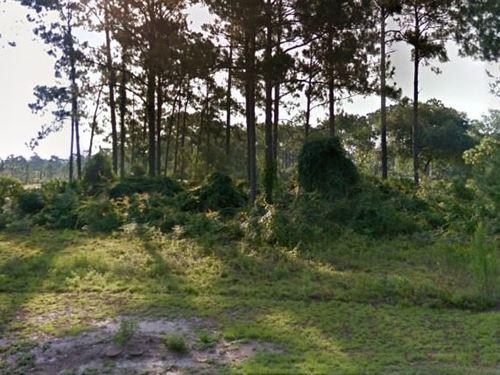 Franklin County, Fl $25,000 Neg : Carrabelle : Franklin County : Florida