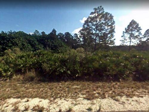 .5 Acres In Alva, FL : Alva : Lee County : Florida