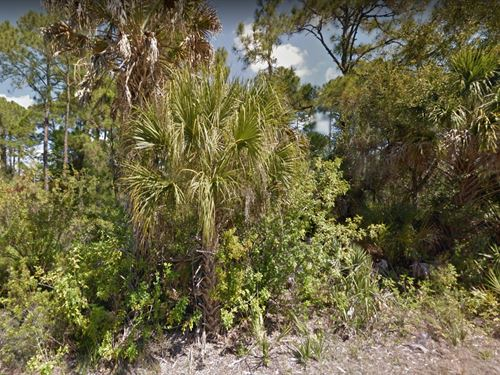 .23 Acres In Port Charlotte, fl : Port Charlotte : Charlotte County : Florida