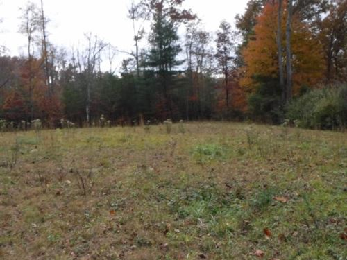 3.27 Ac In Historical Area : Rugby : Morgan County : Tennessee