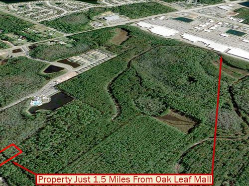 Beautiful Tree-Covered Property : Jacksonville : Duval County : Florida