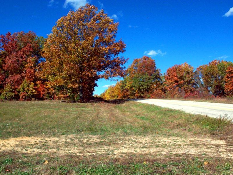 11.2 Acres, 2 Clearings, Hwy Front : Elk Creek : Texas County : Missouri