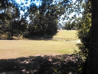 Golf Course Lot, Owner Financing : Chesterfield : Chesterfield County : South Carolina