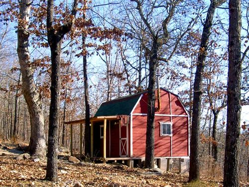 11 Acres With A Rustic Cabin, Creek : Thomasville : Oregon County : Missouri