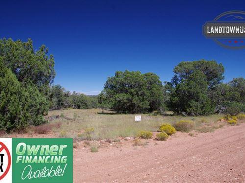 Beautiful Treed 2.01 Acre Property : Seligman : Yavapai County : Arizona