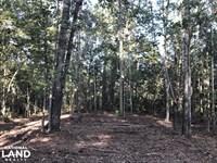 Bonneau Ridge Home Site : Bonneau : Berkeley County : South Carolina