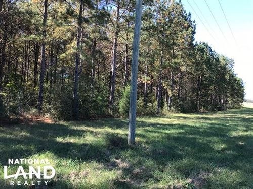 Old Town Tract : Evergreen : Conecuh County : Alabama
