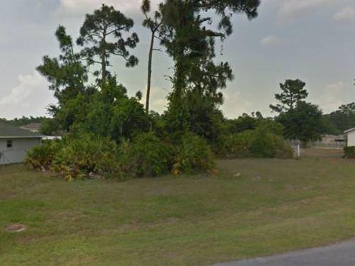 Osceola County, Fl $80,000 Neg : Poinciana : Osceola County : Florida