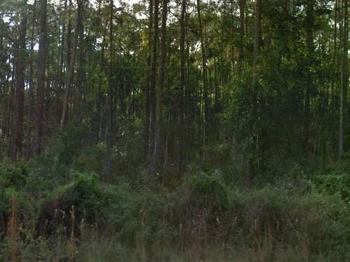 Polk County, Fl $8,500 Neg : River Ranch : Polk County : Florida