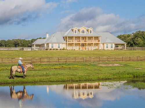 Luxury Home And Stables : Caldwell : Burleson County : Texas