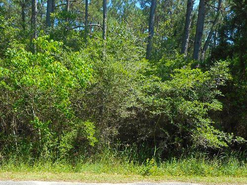 Private Lot Close To The Beach : Milton : Santa Rosa County : Florida