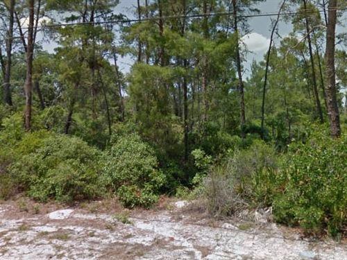 Pasco County, Fl $37,500 Neg : New Port Richey : Pasco County : Florida