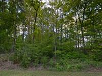 Half Acre Lot On Lake Keowee : West Union : Oconee County : South Carolina