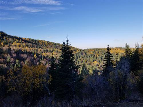 Eagles Nest : Post Falls : Kootenai County : Idaho