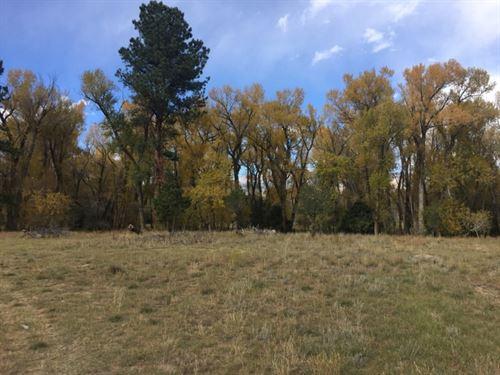 9872759, Close Enough To Ride Your : Buena Vista : Chaffee County : Colorado
