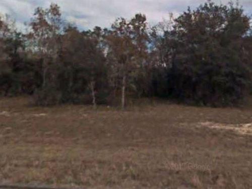 Marion County, Fl $28,500 Neg : Ocklawaha : Marion County : Florida