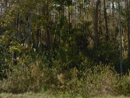 Volusia County, Fl $13,000 Neg : Deland : Volusia County : Florida