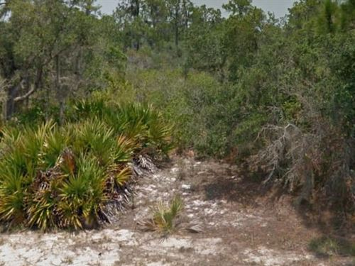 Highlands County, Fl $12,000 Neg : Lake Placid : Highlands County : Florida