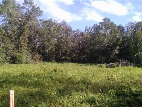 1.5 Acre Residential Lot in Wo : Woodbine : Camden County : Georgia