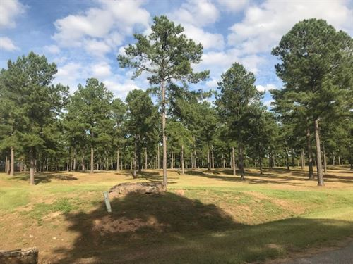 Luxurious Lot With Acreage : Perry : Peach County : Georgia