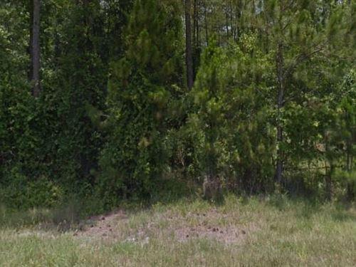 Volusia County, Fl $48,000 Neg : Deland : Volusia County : Florida