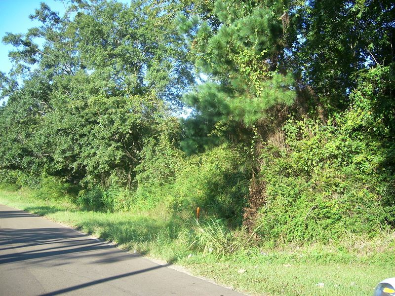 Lot 2 4.35 Acres Off Old Hwy 33 : Centreville : Wilkinson County : Mississippi