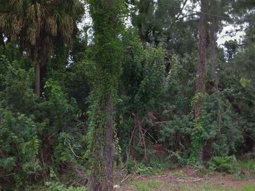 Pasco County, Fl $100,000 Neg : New Port Richey : Pasco County : Florida