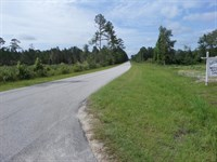Nice Rural Homesite On Little Creek : Jesup : Wayne County : Georgia