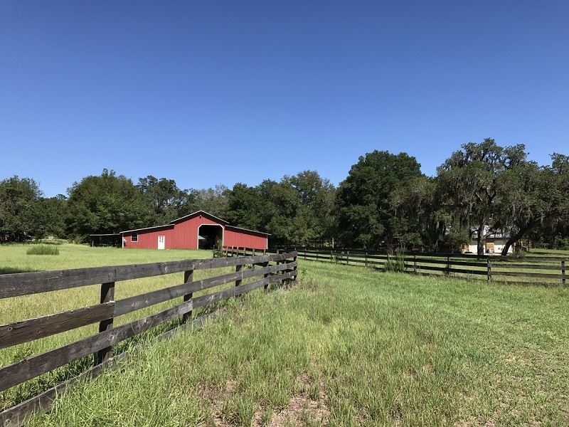 Rawhide 10 Acre Cattle/Horse Ranch : Brooksville : Hernando County : Florida