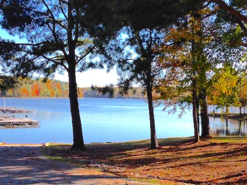 Great Waterfront Lot In Indian Lake : Cedar Grove : Carroll County : Tennessee