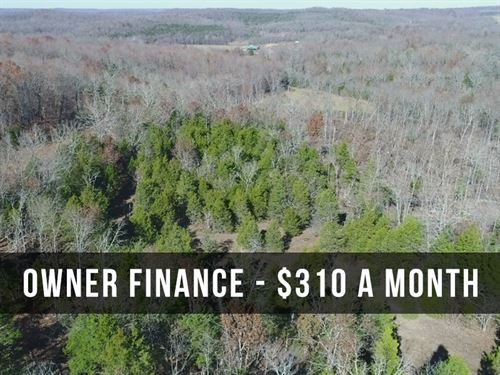 15 Acres W/ Power, Phone, Trees : Drury : Douglas County : Missouri