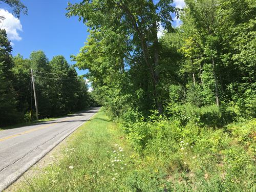 Walk To Mad River State Forest : Florence : Oneida County : New York