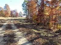 Nice Tn Land In Great Location : Mt. Pleasant : Lewis County : Tennessee