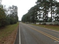 20 Ac - Wooded Tract For Rural Home : Jasper : Jasper County : Texas