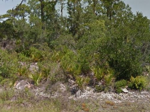 Highlands County, Fl $17,000 Neg : Lake Placid : Highlands County : Florida