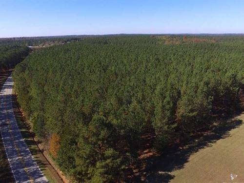 20 Acres in Fairfield County : Winnsboro : Fairfield County : South Carolina