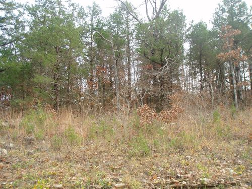 .22 Acres In Mountain Home, AR : Mountain Home : Baxter County : Arkansas